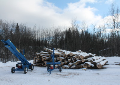 single and static 12 400x284 Overview Gallery, Firewood Splitter, Log Lift